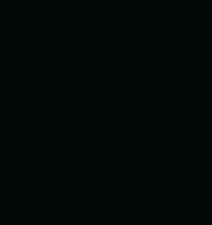 BigDitch-300x318