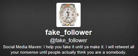 fakefollower