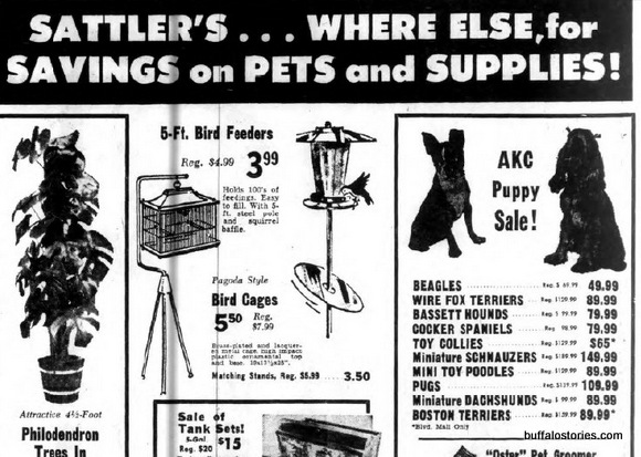 Sattlers had freaking  everything... Including dogs. ON SALE!!